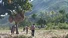 Janvier 2010 : Haïti est secouée... 3e Partie