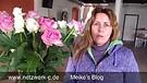 Vlog 28- Verwirrung und Zweifel in Glaubensfragen, was tun?  Heiliger Geist, Lehrer